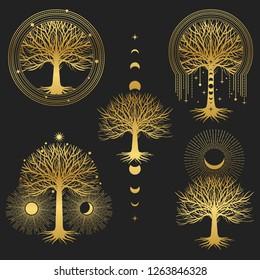 Sacred tree. Set of symmetrical graphic design elements.