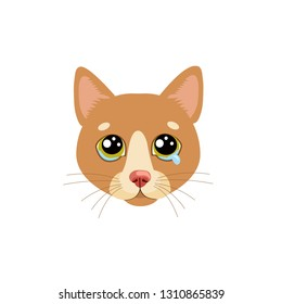 Sad Cat Face Head Vector Icon. Illustration Of Cute Sad Animal. Drear Crying Cat Vector.Crying Cat Emoji.Cute cartoon character. Pet collection. Flat design style. White background. Isolated.