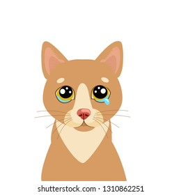 Sad Cat Vector Icon. Illustration Of Cute Sad Animal. Drear Crying Cat Vector. Crying Cat Emoji. Cute cartoon character. Pet collection. Flat design style. White background. Isolated.