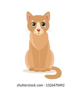Sad Crying Cat Cartoon Vector Illustration. Sitting Cat With Tears. Crying Cat Face. Weep Homeless Pet. lat style Cartoon Illustration of Cute Sad Animal.