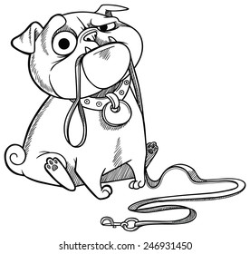 sad pug puppy sitting with dog-lead in it's mouth and asking for a walk. Cartoon character. Vector illustration.
