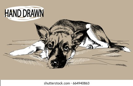 The sad puppy lies. Drawing by hand in vintage style. Children's drawing. A little spotty puppy. Sad eyes. The dog lies.
