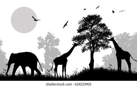 Safari wild animals silhouette on black and white, vector illustration