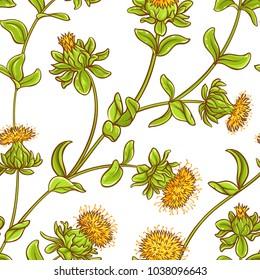 safflower plant vector pattern