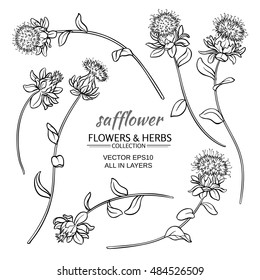 safflower plant vector set on white background