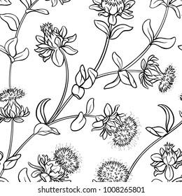 safflower seamless pattern