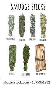 Sage smudge sticks hand-drawn set of doodles. Herb bundles