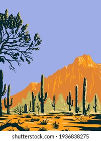 Saguaro Cactus or Carnegiea Gigantea in Ironwood Forest National Monument Section of the Sonoran Desert in Arizona WPA Poster Art