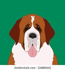 Saint bernard, The buddy dog