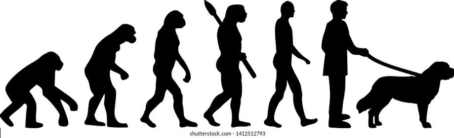Saint Bernard evolution with Saint Bernard name