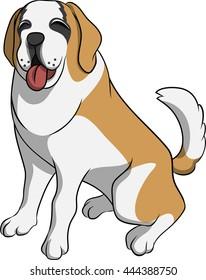 a saint bernard puppy
