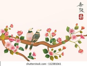 sakura , bird .