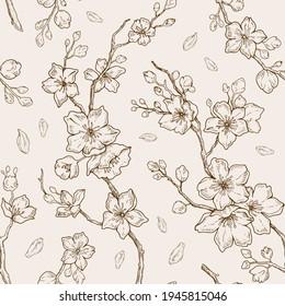 Sakura blossom pattern. Cherry flower seamless vector background. Floral japanese or chinese black line art. Spring vintage tree branch. Sketch outline illustration. Hand drawn seamless sakura pattern