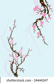 sakura branch with flowers