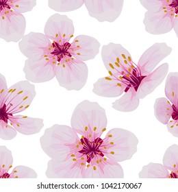 Vectores Imágenes Y Arte Vectorial De Stock Sobre Sakura