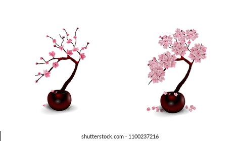 Sakura Ikebana. Composition. Two Drawings of flowers in pots. Isolated on white background. vector illustration