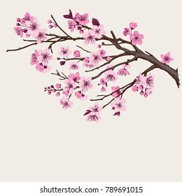 фотообои Sakura. Pink cherry blossom branch. Vector botanical illustration.