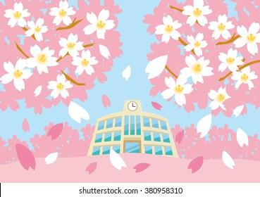 Sakura of school