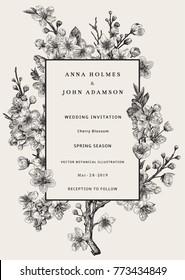 Sakura. Wedding invitation. Cherry blossom branch. Vector botanical illustration. Black and white