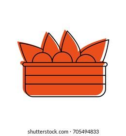 salad food icon image