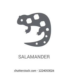 salamander icon. Trendy salamander logo concept on white background from animals collection. Suitable for use on web apps, mobile apps and print media.