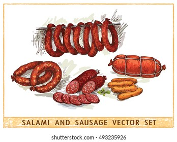 Salami and sausages vector set on white background