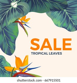 Sale background with exotic tropical leaves and orange flowers with text isolated on white.