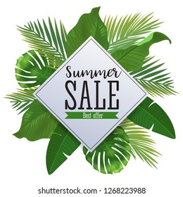 Sale banner, poster with palm leaves, jungle leaf and handwriting lettering. Floral tropical summer background.