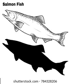 Salmon art highly detailed in line art style.Fish vector by hand drawing.Animal tattoo on white background.Black and white fish vector on white background.Salmon set sketch for coloring book.