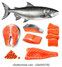 Salmon fish raw steaks and caviar icons set isolated on white background realistic vector illustration