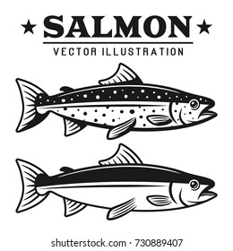 Salmon fish set of two styles vector detailed vintage illustration isolated on white background
