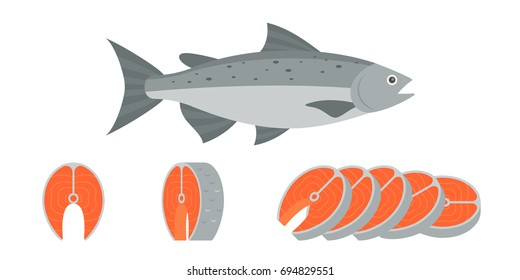 salmon fish and sliced of salmon fillet steak illustration, flat design vector