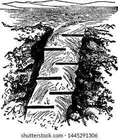 Salmon Ladder, vintage engraved illustration.