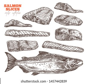 Salmon slices hand drawn illustrations set. Raw uncooked red fish fillet pieces and steaks color sketches pack. Omega and vitamins rich food. Sea and ocean fish black and white ink pen drawings