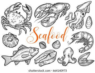 Salmon, tuna fish steak, crab, mussels, oysters, prawn, shrimp, squid, lobster, omar, octopus, clam sketch vector set. Hand drawn engraved illustration. Marine Healthy seafood. Organic product