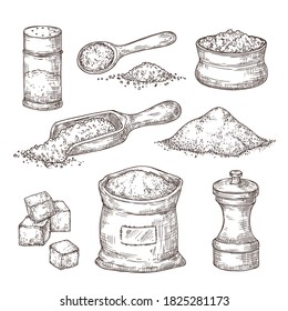 Salt sketch. Hand draw spice, vintage bowl spoon with sea salt powder. Food ingredients to cook, isolated pepper shaker vector illustration