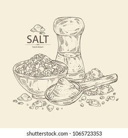 Salt: spoon with salt, pink Himalaya salt and salt shaker. Vector hand drawn illustration.