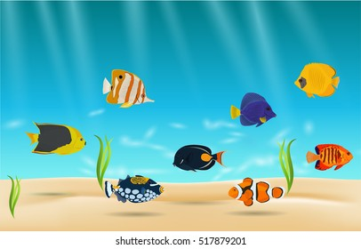 Saltwater aquarium fish, exotic fish in water.