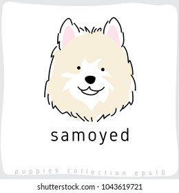 Samoyed : Dog Breed Collection : Vector Illustration