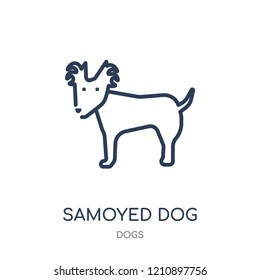 Samoyed dog icon. Samoyed dog linear symbol design from Dogs collection. Simple outline element vector illustration on white background.