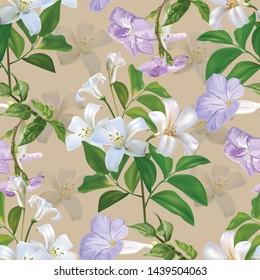 Sampaguita jusmine white flower and green leaves seamless pattern - Vector illustration