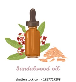 Sandalwood essential  oil amber glass dropper bottle isolated on white background. Sticks and fragrant flowers. Vector illustration in cartoon flat style.