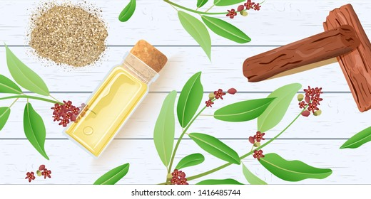 Sandalwood essential oil in glass scent bottle with cork on white wooden shabby desk. Chandan leaves, sticks, branch, powder. Card template text. for cosmetics, medicine, aromatherapy, perfume, spa