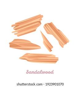 Sandalwood sticks isolated on white background. Vector illustration of Chandan in cartoon flat style. Icon.