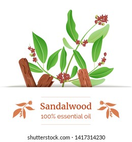 Sandalwood sticks and leaves label. card template with copy space. Card template. essential oil branch. Vector illustration. For prints, posters, flyer, flier, text, copy space, textile tags labels