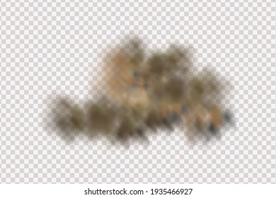 Sandstorm, a cloud of dust or sand flying from under the wheels of a car or motorcycle. Realistic vector illustration.