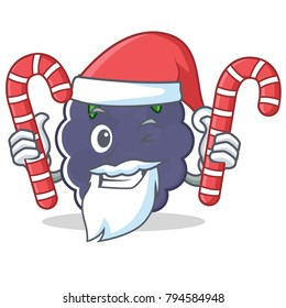 Santa with candy blackberry mascot cartoon style