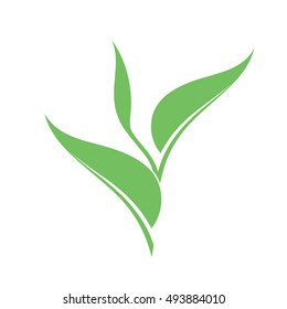 Sapling. Vector illustration. Green plant with leaves on white background