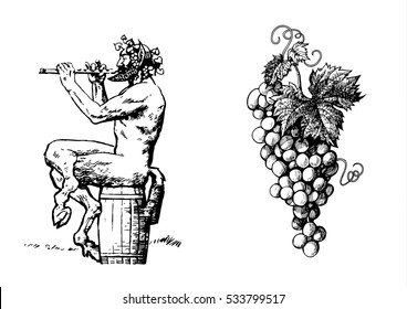 Satyr sitting on the barrel playing the flute and bunch of grapes. Design elements for wine list or tattoo. Hand drawn vector  illustration in sketch style. Isolated on white background.