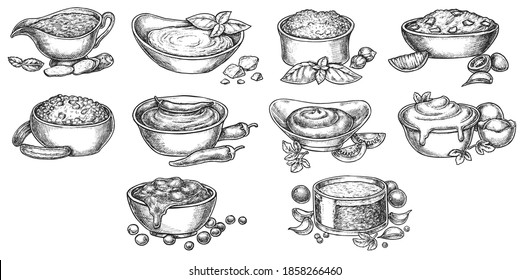 Sauce seasoning dip bowl with ingredient hand drawn sketch. Mayonnaise, ketchup, mustard, wasabi, bechamel food condiment ink engraved menu set vector illustration isolated on white background